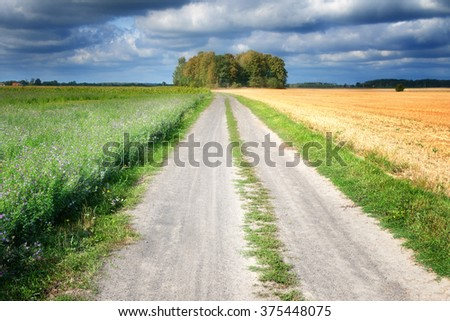 Summer landscape with country road. On both sides fields of stubble and cultivation of alfalfa. Masuria, Poland. - stock photo