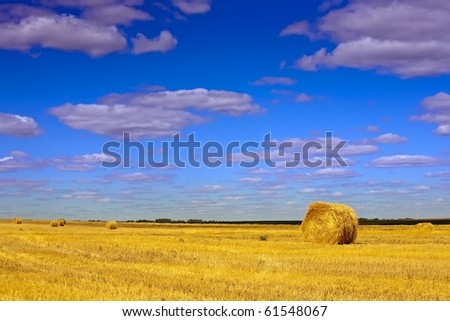 Summer landscape with field under cloudy sky - stock photo