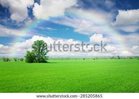 Summer landscape with green grass field, blue sky with clouds and rainbow - stock photo