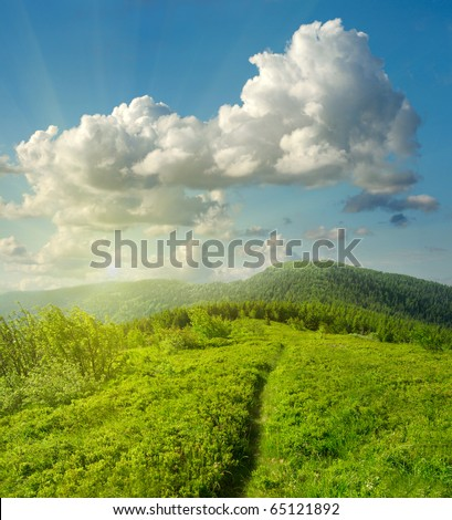 Summer landscape with green grass, mountains and clouds - stock photo