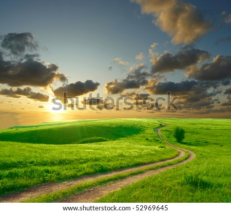Summer landscape with green grass, road and clouds