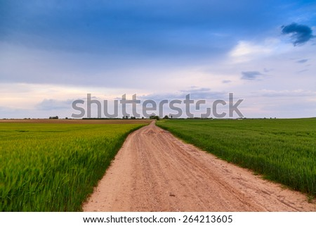 Summer landscape with green grass, road and clouds in Hungary - stock photo