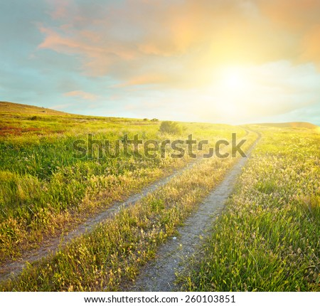 Summer landscape with green grass, road and sunset clouds - stock photo