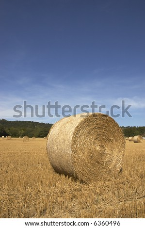 summer landscape with hay bales and deep blue skyscape
