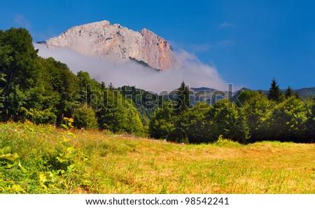 Summer landscape with huge rock at summer - stock photo