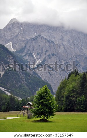 Summer landscape with the Julian Alps in the background. Gorenjska, Slovenia