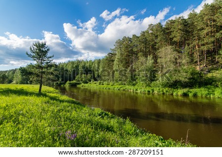 Summer landscape with the river and wood, Ural Mountains, Russia - stock photo