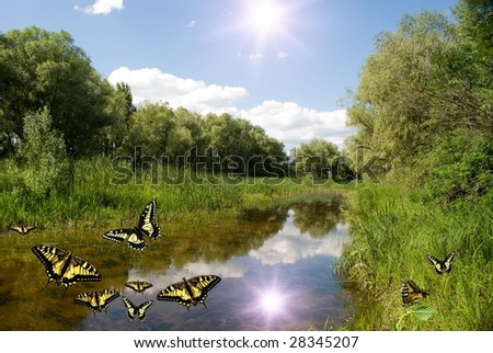 Summer landscape with the small river and moths - stock photo