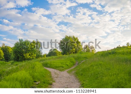 Summer landscape with the wood, a field and the road. - stock photo