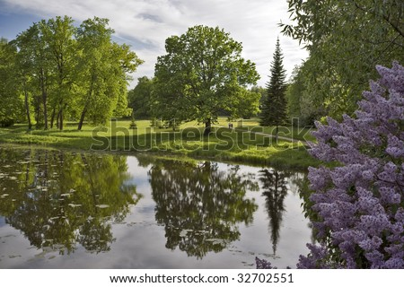 Summer landscape with water and blossoming lilac
