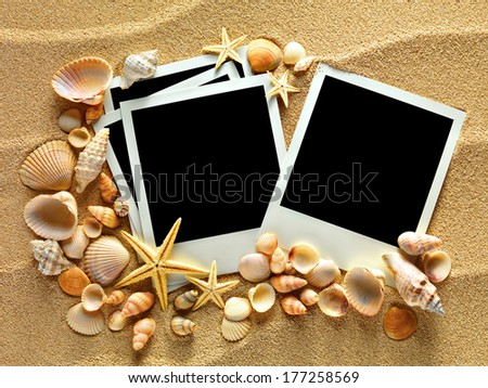 Summer like vintage empty polaroid photo cards are lying on the sea sand decorated with seashells and starfish. Sunny summer trip concept. Space for your text.  - stock photo