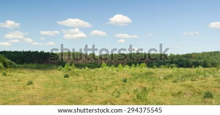 Summer meadow and wood - stock photo