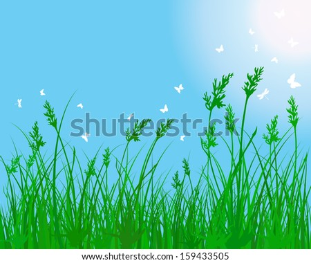 Summer meadow background.
