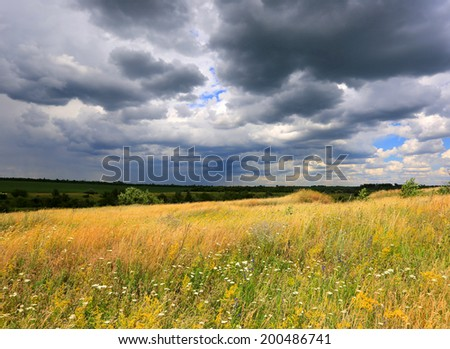summer meadow under dark clouds before thunder storm - stock photo