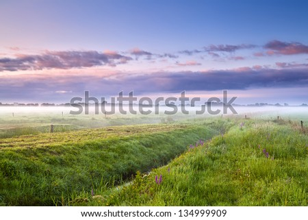 summer misty morning sunrise over meadows, Drenthe - stock photo
