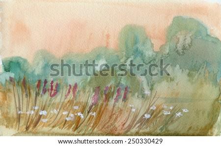 Summer morning field. Watercolor landscape - stock photo