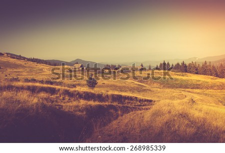 Summer mountain landscape. Hiking road in the hills. Filtered image:cross processed vintage effect.  - stock photo