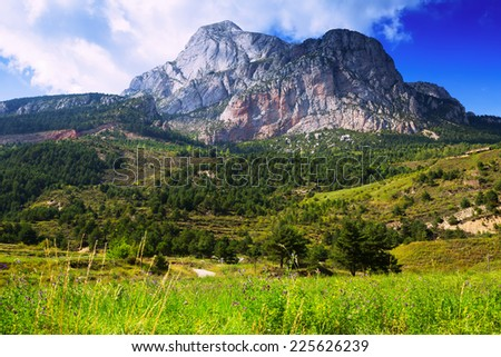 Summer mountains landscape with rocky mount. Pyrenees, Catalonia - stock photo