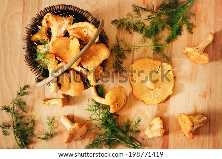 Summer mushrooms in the basket - stock photo