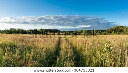 Summer natural agricultural field landscape - beautiful meadow with grass and wildflowers and country road under summer blue sky with white clouds under bright summer sunlight panoramic landscape - stock photo
