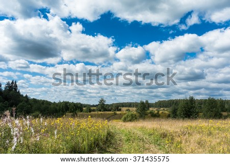 Summer natural agricultural field landscape: beautiful meadow with yellow wildflowers and country road under summer blue sky with white clouds under bright summer sunlight landscape - stock photo