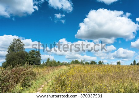 Summer natural agricultural field landscape: beautiful meadow with yellow wildflowers under summer blue sky with white clouds under bright summer sunlight near village landscape - stock photo