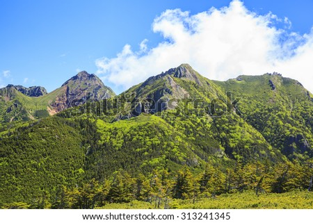 Summer of Mt. Yatsugatake, Nagano, Japan - stock photo