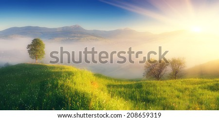Summer panorama from the morning mist over a mountain village. The first rays of sun on a meadow with lush green grass. Soft effect. Color toning - stock photo