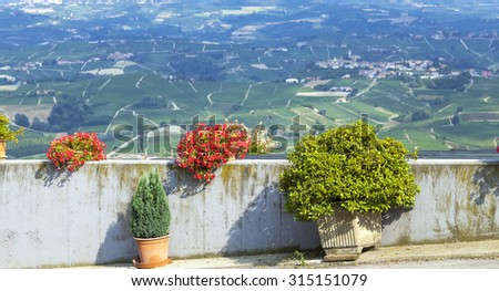 Summer panorama of the hilly region of the Langhe (Piedmont, Northern Italy) full of vineyards of the famous wine â??Baroloâ?�.
