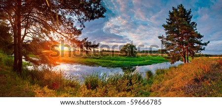 Summer panorama with river and pine-tree on sunset - stock photo