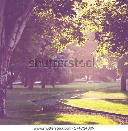 summer park - stock photo