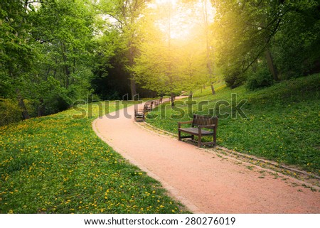 Summer park at sunny day - stock photo