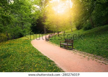 Summer park at sunny day - stock photo