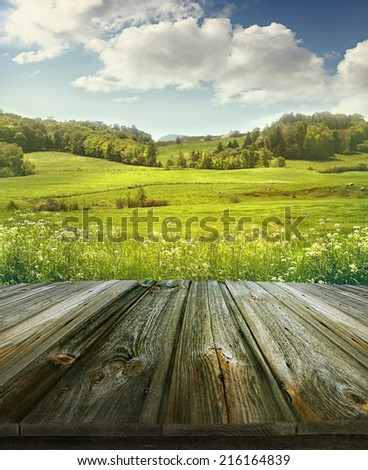 Summer pastoral background with rough wooden planks  - stock photo