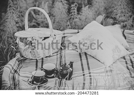 summer picnic - stock photo