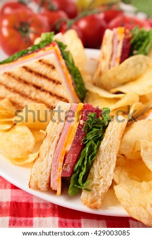 Summer picnic club sandwich ham and cheese, potato crisps