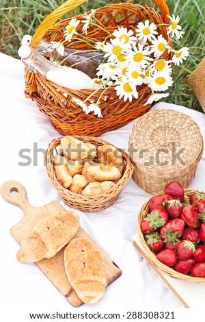 Summer picnic in camomile field in Crimea region  - stock photo