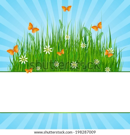 Summer radial background with space for you text. Raster version.   - stock photo