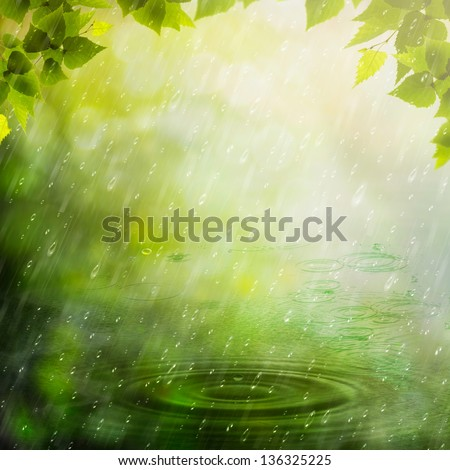 Summer rain. Abstract natural backgrounds - stock photo