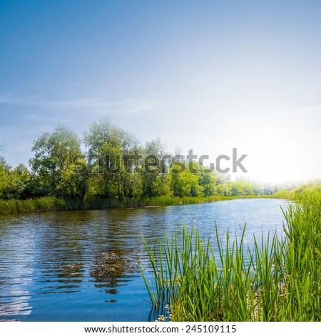summer river scene - stock photo
