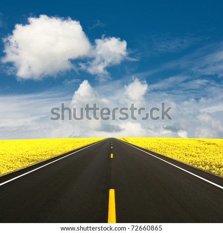 Summer road - stock photo