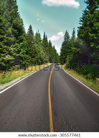 Summer road through the forest in beautiful countryside - stock photo