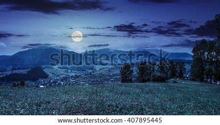 summer rural landscape. meadow with few trees near the village in mountain valley at night in full moon light - stock photo