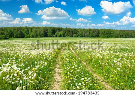 summer rural landscape with a blossoming meadow, the road and the blue sky - stock photo