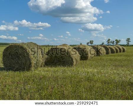 summer rural landscape with a field and hay rolls - stock photo