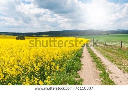 summer rural landscape with beautiful cloudscape - stock photo