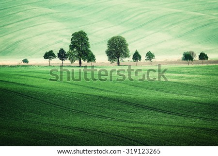 Summer rural landscape with green fields and trees, vintage picture - stock photo