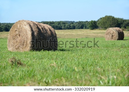 Summer rural landscape with hay rolls on a green meadow - stock photo