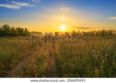 summer rural landscape with sunrise, fog and the road - stock photo