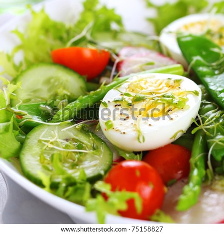Summer salad of tomatoes, cucumbers, asparagus, young green peas dressed with olive oil and watercress salad - stock photo